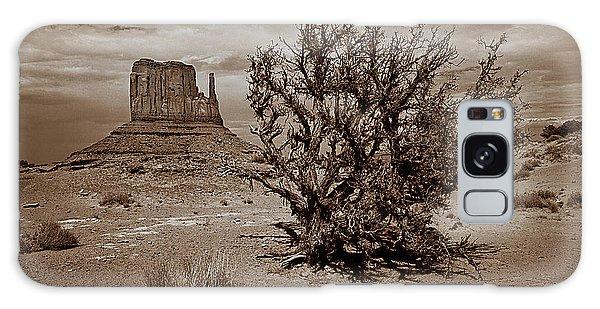 Joshua Tree Galaxy Case