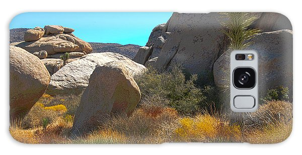 Joshua Tree National Park Galaxy Case