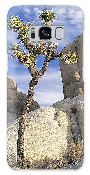 Joshua Tree Np  Galaxy Case