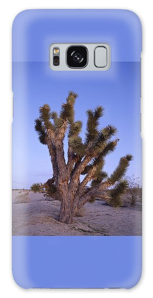 Solitude Of The Joshua Tree Galaxy Case by Shaun Higson