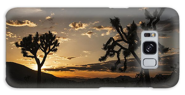 Joshua Tree Sunset Silhouette 2 Galaxy Case