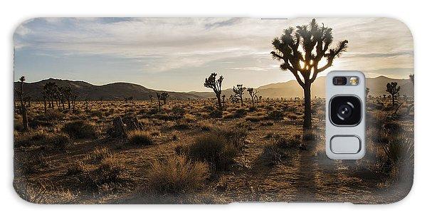 Joshua Tree Sunset Silhouette Galaxy Case