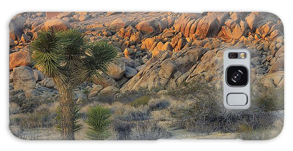 Joshua Tree With Offsrping Galaxy Case
