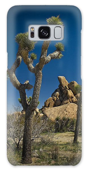California Joshua Trees In Joshua Tree National Park By The Mojave Desert Galaxy Case
