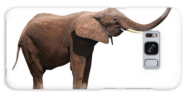 Joyful Elephant Isolated On White Galaxy Case