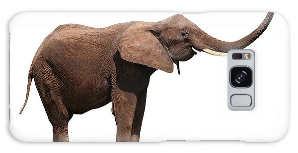 Joyful Elephant Isolated On White Galaxy Case