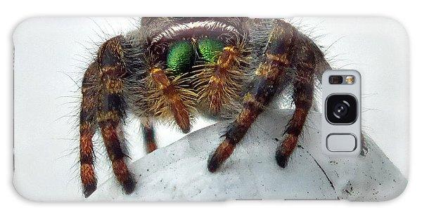 Jumper Spider 2 Galaxy Case