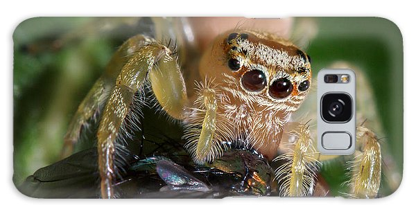 Jumping Spider 3 Galaxy Case by Brad Grove