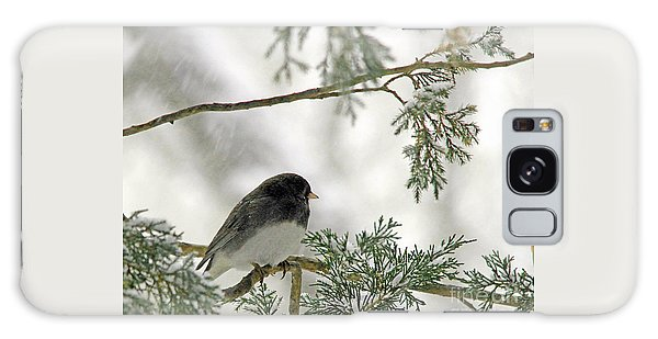 Junco In Snowstorm Galaxy Case by Paula Guttilla