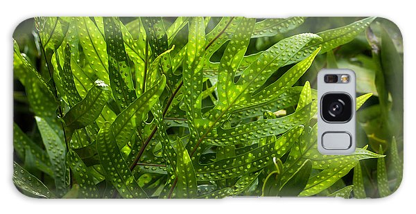 Jungle Spotted Fern Galaxy Case