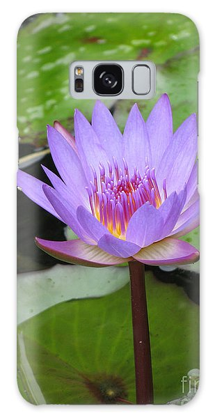Just A Water Lily  Galaxy Case