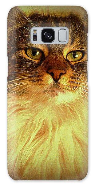 Just Cat Galaxy Case