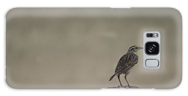 Western Meadowlark On A Fence Post Galaxy Case