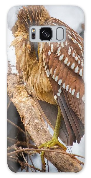 Juvenile Black Crowned Night Heron Galaxy Case