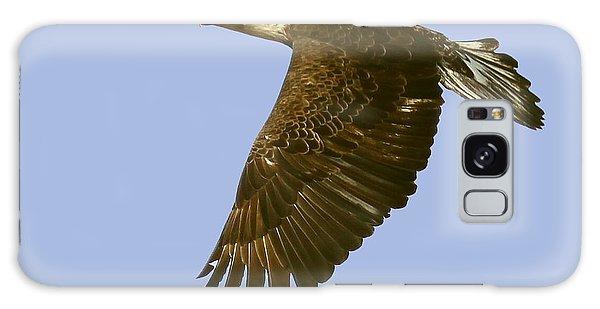 Juvenile Eagle Flight Galaxy Case by Myrna Bradshaw