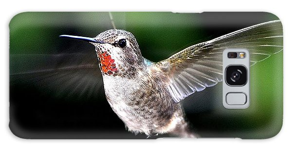 Juvenile Red Thoated Hummingbird Galaxy Case