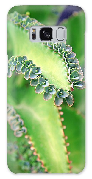 Kalanchoe Galaxy Case