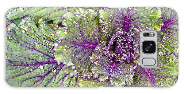 Kale Plant In The Rain Galaxy Case