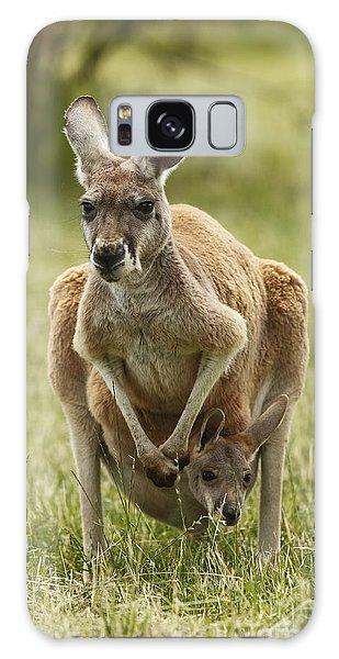 Kangaroo And Joey Galaxy Case by Craig Dingle