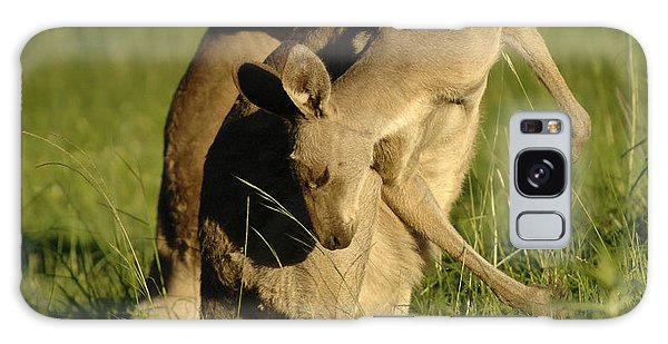 Kangaroos Taking A Bow Galaxy Case by Bob Christopher