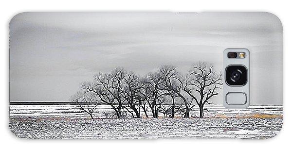 Kansas Snow Galaxy Case