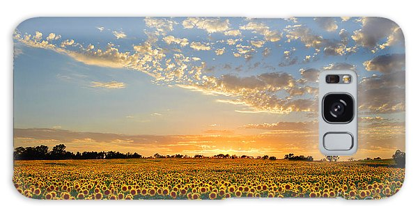 Kansas Sunflowers At Sunset Galaxy Case