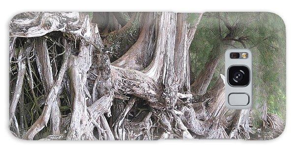 Kauai - Roots Galaxy Case