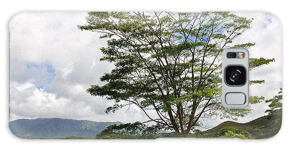 Kauai Umbrella Tree Galaxy Case