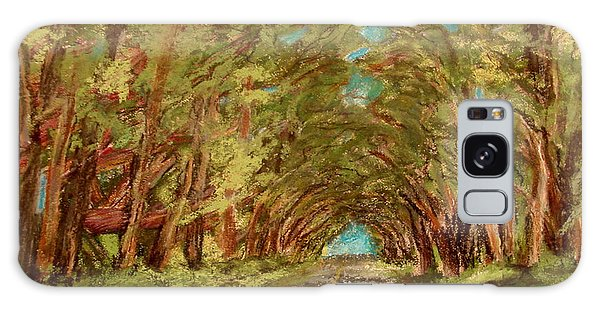 Kauiai Tunnel Of Trees Galaxy Case by Joseph Hawkins