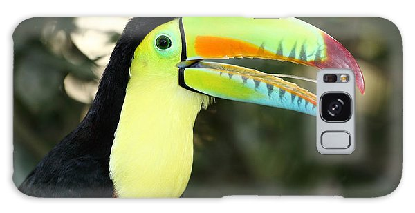 Keel Billed Toucan Galaxy Case