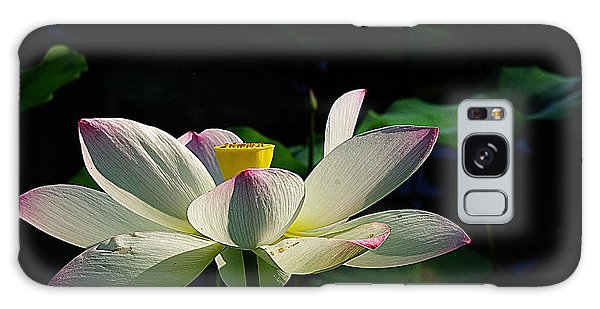 Kenilworth Garden Two Galaxy Case by John S