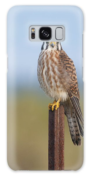 Kestrel On Metal Post Galaxy Case