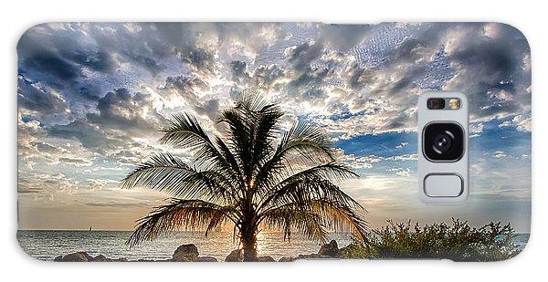 Key West Florida Lone Palm Tree  Galaxy Case