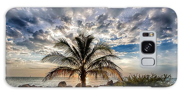 Key West Florida Lone Palm Tree  Galaxy Case
