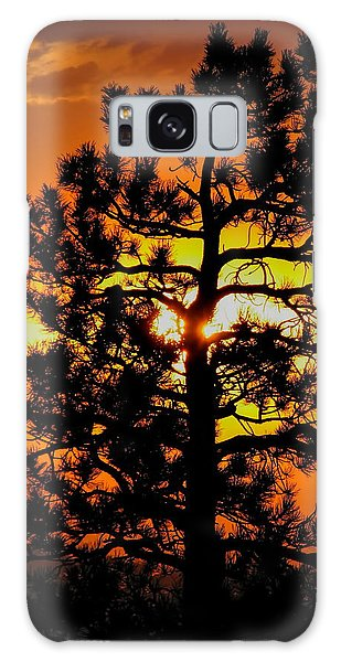 Keystone Pine Galaxy Case