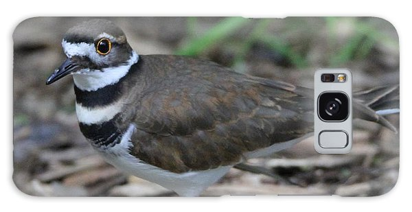Killdeer Galaxy Case - Killdeer by Dan Sproul