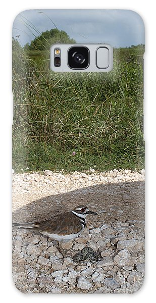 Killdeer Defending Nest Galaxy Case by Gregory G. Dimijian