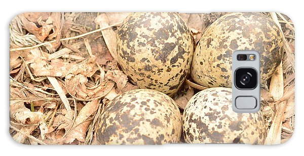Killdeer Eggs Galaxy Case