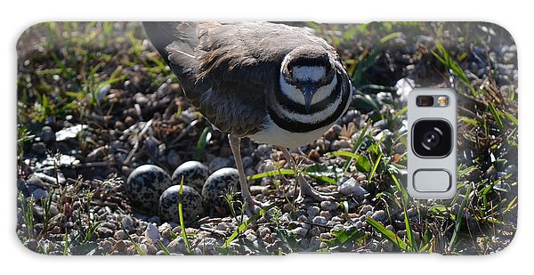 Killdeer Guarding Her Eggs Galaxy Case by Tara Potts