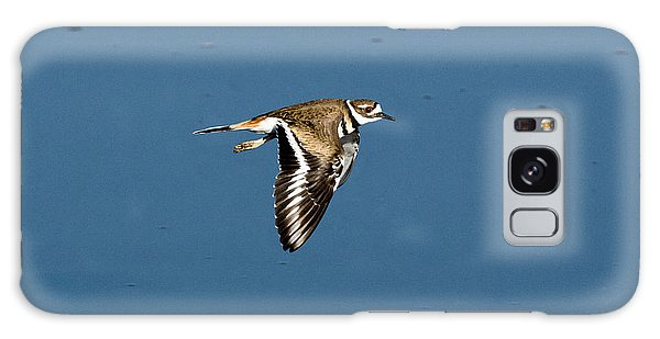 Killdeer In Flight Galaxy Case by Anthony Mercieca