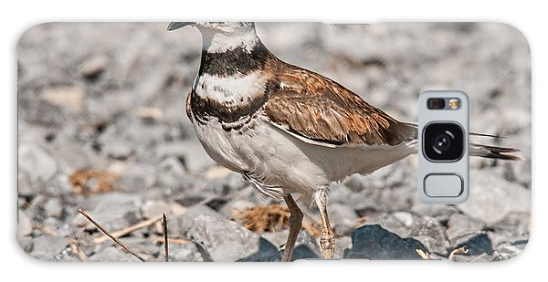 Killdeer Galaxy Case - Killdeer Nesting by Lara Ellis