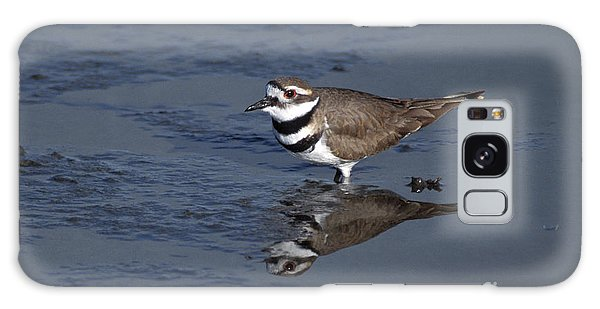 Killdeer Galaxy Case - Killdeer Plover Charadrius Vociferus by Ron Sanford