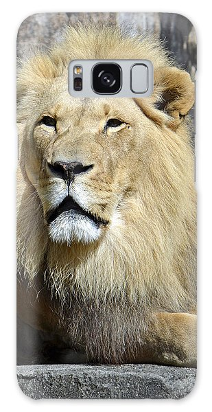 King Of Beasts Galaxy Case