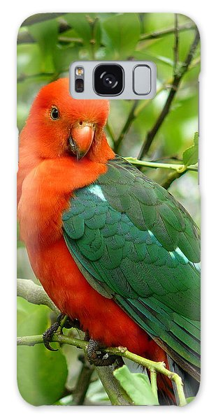 King Parrot Male Galaxy Case by Margaret Stockdale