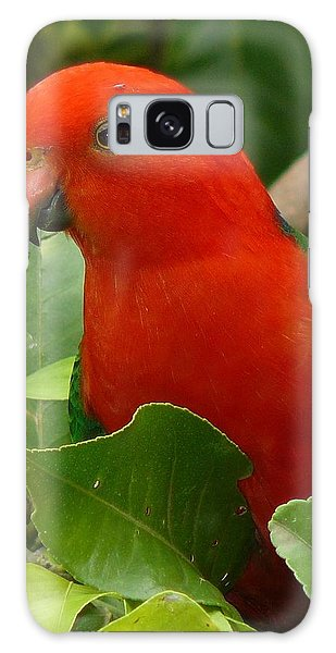 King Parrot Portrait Galaxy Case by Margaret Stockdale