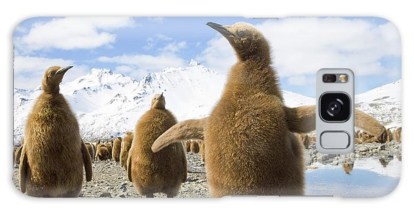 King Penguin Chicks South Georgia Island Galaxy Case by Yva Momatiuk and John Eastcott