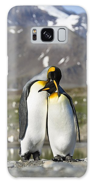Galaxy Case featuring the photograph King Penguins Courting St Andrews Bay by Konrad Wothe
