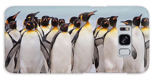 King Penguins Galaxy Case