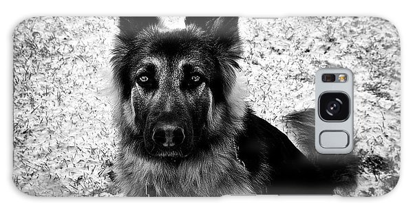 King Shepherd Dog - Monochrome  Galaxy Case