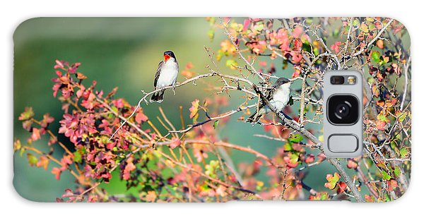 Kingbird Pair Galaxy Case